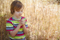 Praying little boy in the park Royalty Free Stock Image
