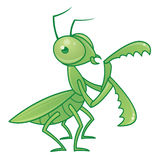 Praying Mantis Character. Vector drawing of a cute and friendly praying mantis character stock illustration