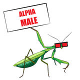 Praying mantis. Funny vector illustration. T-shirt design Royalty Free Stock Photos