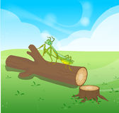 Praying mantis  grasshopper cartoon and Wooden Logs Isolated  objects Royalty Free Stock Photos