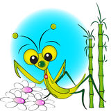 Praying mantis - Kid Illustration Stock Images