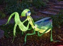 Praying Mantis Lantern royalty free stock images