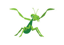 Praying mantis vector Stock Images