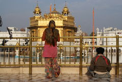 Praying na frente do templo dourado Imagem de Stock Royalty Free
