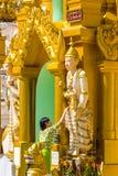 Praying Shwedagon Pagoda  Yangon in Myanmar Stock Photos