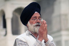 Praying Sikh in Amritsar Royalty Free Stock Photo