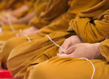 Praying thai bhuddhist monks. Thai bhuddhist monks are praying in a ceremony Royalty Free Stock Photography