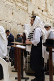 Praying in the Western wall. Men Praying in the Western wall stock image