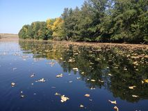 Prazer, abrandamento, transportar, kayaking, outono, rio Foto de Stock