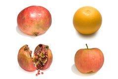Prazer da fruta do inverno Fotografia de Stock Royalty Free