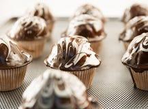 Prazer do chocolate Fotos de Stock