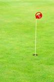 Práctica del golf que pone el agujero Fotografía de archivo libre de regalías