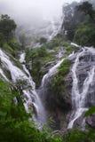 Pre cascata di Toh Lor Soo Fotografia Stock Libera da Diritti
