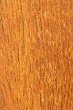 Pre-finished hardwood floor sample. Close up of prefinished hardwood flooring sample Stock Image
