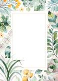 Pre-gjort h?lsa kort med suckulenta v?xter, palmblad, blommor, filialer royaltyfri illustrationer