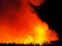 Pre Harvest Sugar Cane Fire. Before harvesting many of the sugar cane farmers burn their crop.  This clears the excess leaves etc and kills off the snakes in the Royalty Free Stock Image