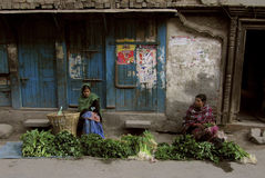 Pre jordskalv Katmandu Nepal arkivbilder