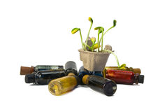 Pre-production models. Green plants and medical flasks on a white background stock images