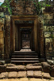Pre rup Royalty Free Stock Image