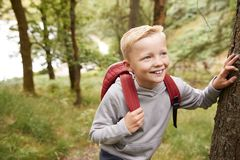 Pre-teen boy taking a break leaning on a tree during a hike in a forest, elevated view, close up stock image