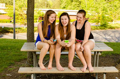 Pre-teen girls texting while hanging out in front. Young pre-teen girls texting while hanging out in front of their school Stock Photos
