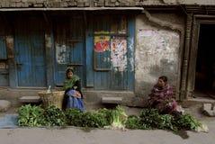 Pre trzęsienie ziemi Kathmandu Nepal Obrazy Stock
