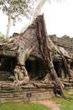 Preah可汗寺庙在吴哥在暹粒 库存图片