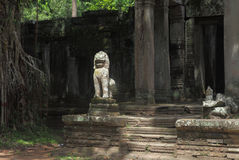 Preah可汗寺庙在吴哥窟 免版税库存照片
