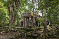 Preah Kahn temple Angkor Archeological Park, Cambodia Royalty Free Stock Image
