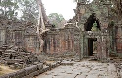 Preah  Khan Royalty Free Stock Photos