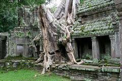 Preah Khan - Cambodia Royalty Free Stock Photos