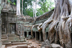 preah khan d'angkor Photo stock