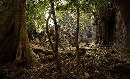 Preah Khan discovery. View from the jungle Royalty Free Stock Photo