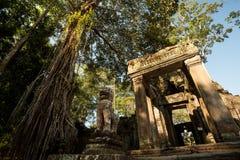 Preah Khan ingång med lejon arkivfoton