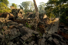 Preah Khan Panorama. Preah Khan stones and tree Panorama Royalty Free Stock Photos