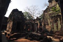 Preah Khan przy Siem Przeprowadza żniwa, Kambodża Obraz Stock