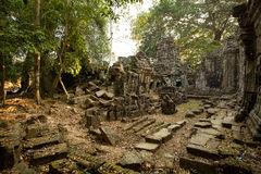Preah Khan ruins. In the jungle Stock Image