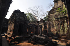 Preah Khan a Siem Reap, Cambogia Immagine Stock