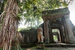 Preah Khan Temple in Angkor Royalty-vrije Stock Foto