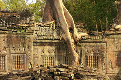 Preah Khan temple, Angkor area, Siem Reap Royalty Free Stock Images