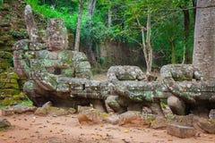 Preah Khan temple, Angkor area, Siem Reap, Cambodia Royalty Free Stock Photo