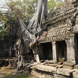 Preah Khan temple, Angkor Cambodia Royalty Free Stock Images