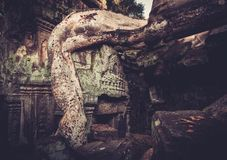 Preah Khan Temple, Angkor, Siem Reap,  Cambodia. Royalty Free Stock Photos