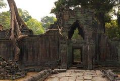 Preah Khan Temple, Angkor Wat Stock Foto