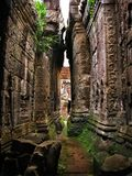 Preah Khan temple in Angkor Wat (Cambodia). stock photo