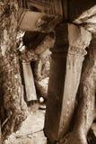 Preah Khan Temple dans Angkor Photographie stock libre de droits