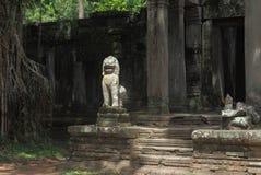 Preah Khan Temple i Angkor Wat Royaltyfria Foton