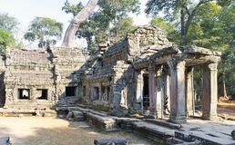 Preah Khanit is translated as `A sacred sword`. Trees and ruins of the temple, Siem Reap, Cambodia.  Royalty Free Stock Photography