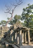 Preah Khanit is translated as `A sacred sword`. Trees and ruins of the temple, Siem Reap, Cambodia.  Stock Photos