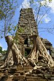 Preah Palilay in Angkor Kambodja Stock Afbeeldingen